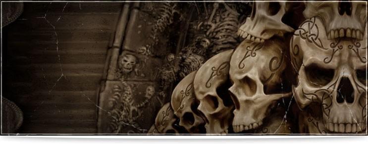Schädel & Knochen Figuren & Statuen Shop | Drachenhort