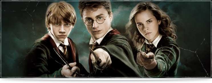 Harry Potter Zauberstäbe & Stöcke Shop | Drachenhort